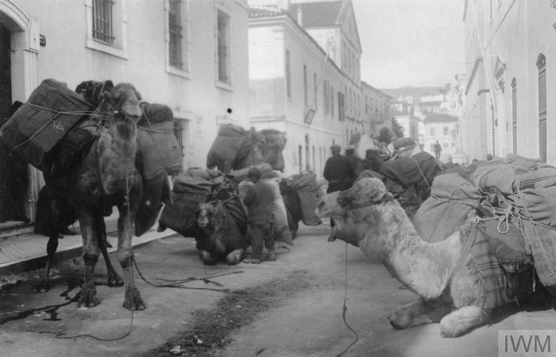 Турска транспортна колона со камили во мирување пред владиното складиште за тутун во Ускуб (Скопје), 1917 година. Фотографија е направена од германски фотограф, во колекцијата на Империјалниот воен музеј во Лондон.
