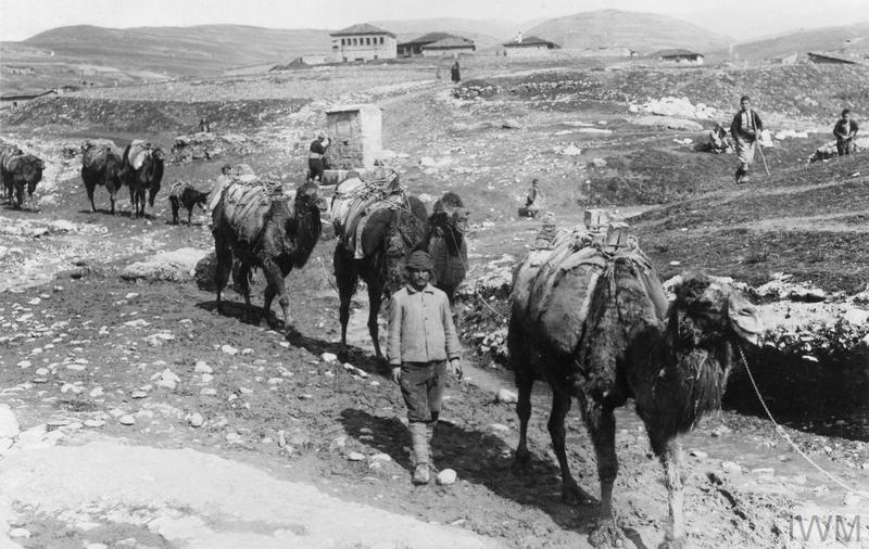 Турска колона за транспорт со камили во близина на Ускуб (Скопје), 1917 година. Фотографија енаправена од германски фотограф и е во збирката на Империјалнион воен музеј, Лондон.